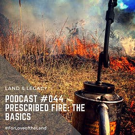 Podcast #44: Prescribed Fire: The Basics