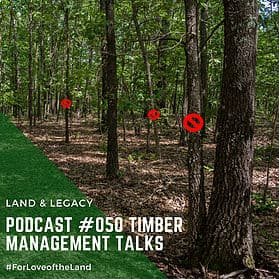 Podcast #50:  Timber Management Talks