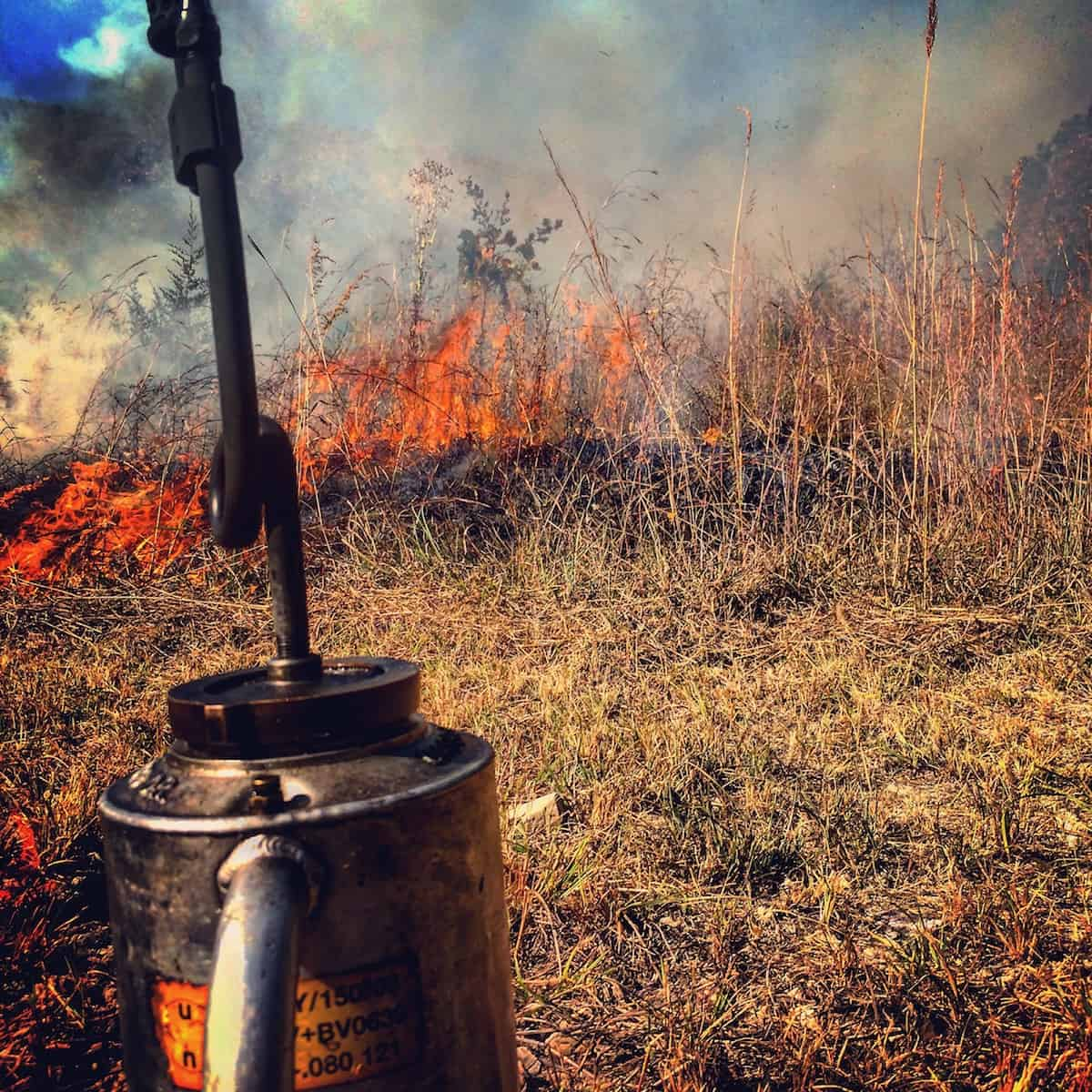 Why You Should Be Using Prescribed Fire
