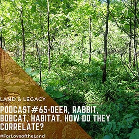 Podcast #65: Deer, Rabbit, Bobcat, Habitat. How Do They Correlate?