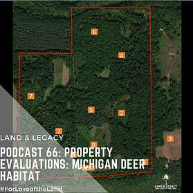 Podcast #66: Property Evaluations: Michigan Deer Habitat