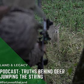 "Podcast:  The Truth Behind Deer ""Jumping the String"""
