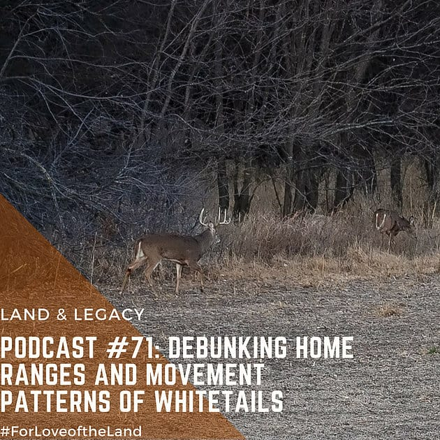 Podcast #71:  Debunking Home Ranges and Movement Patterns of Whitetails
