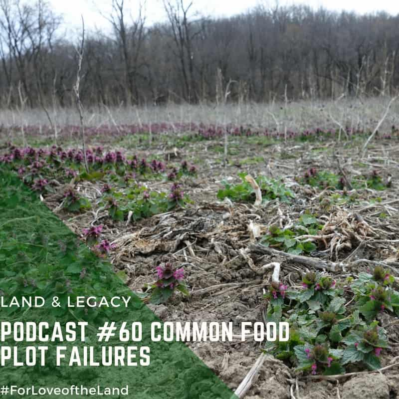 Podcast #60: Common Food Plot Failures
