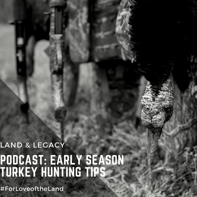 Podcast: Longbeard Success in the Midwest