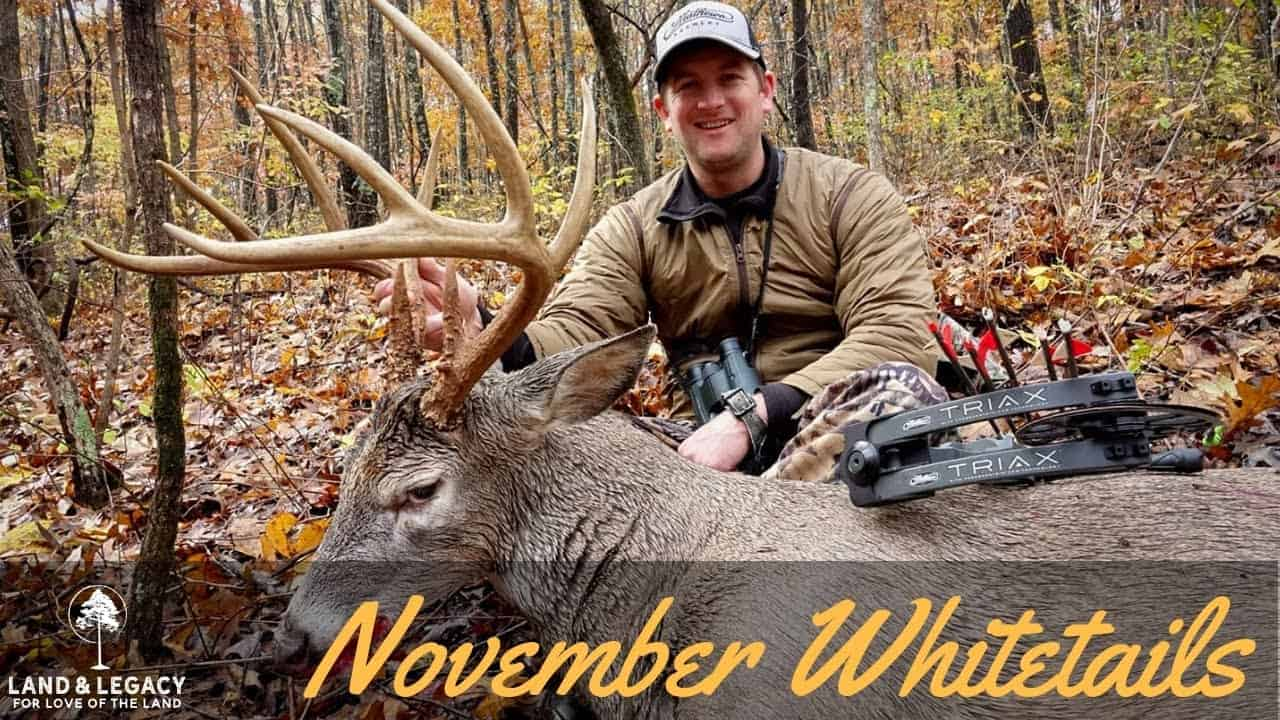 November Whitetails- Bowhunting Missouri