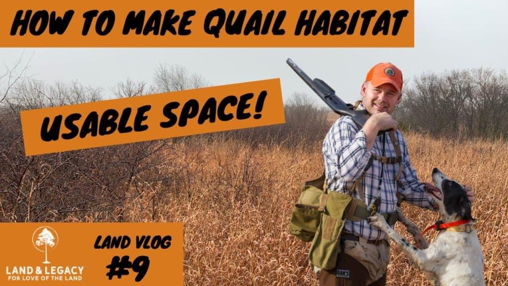 Creating quail habitat