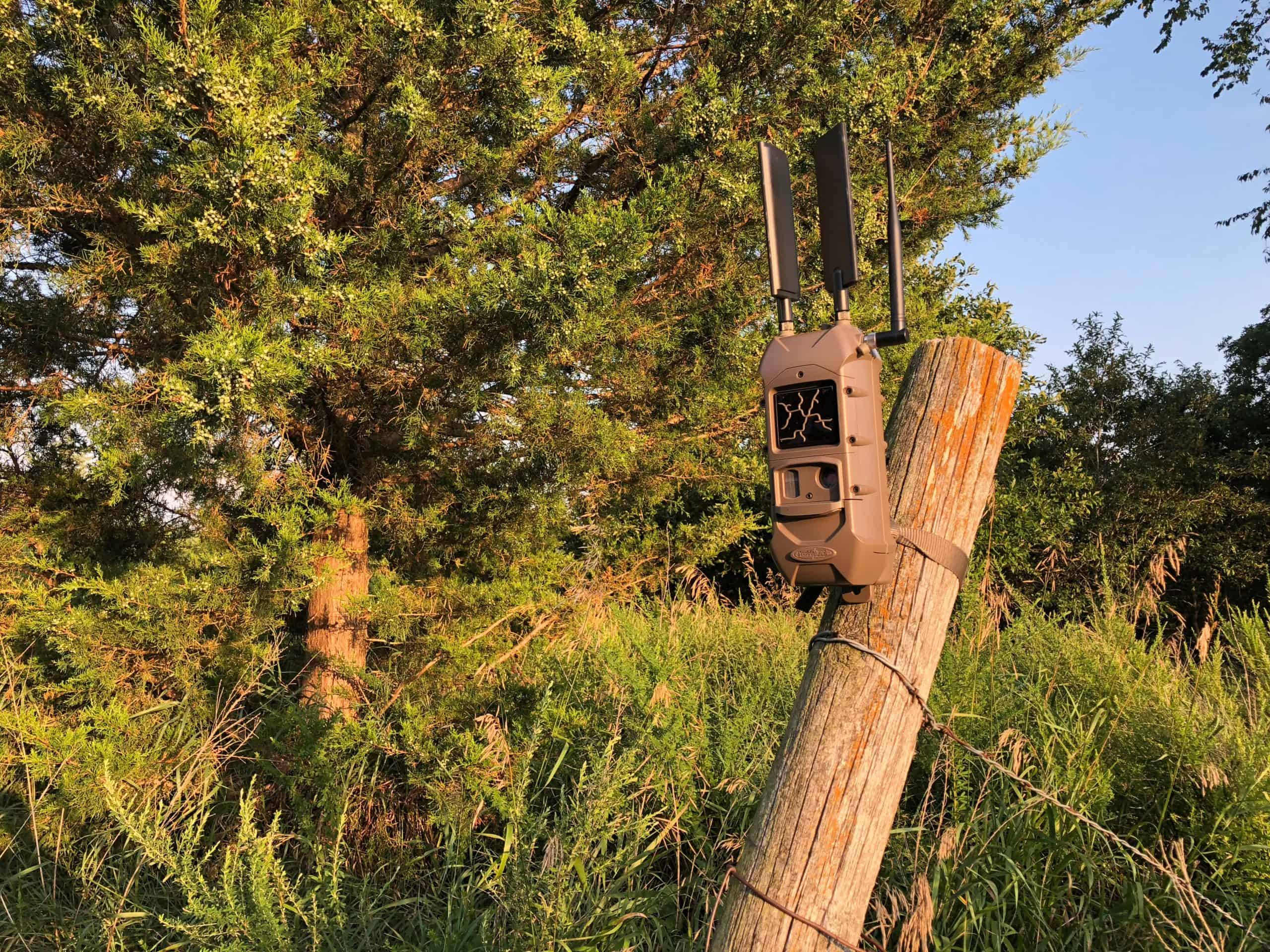 Changing the Trail Camera Game with the Cuddelink System