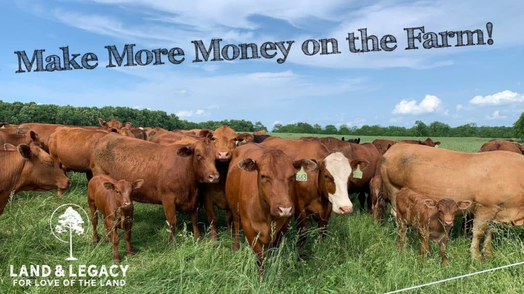 cattle farming and habitat